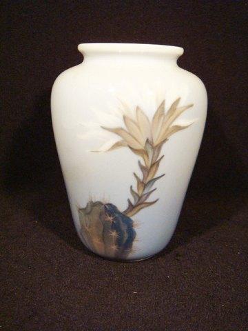 Vase til kaktus